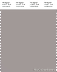 PANTONE SMART 16-3802X Color Swatch Card, Ash