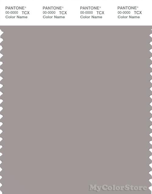 PANTONE SMART 16-3802X Color Swatch Card, Ash