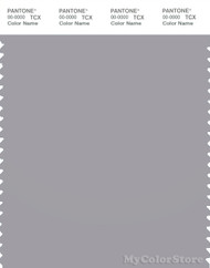 PANTONE SMART 16-3850X Color Swatch Card, Silver Sconce