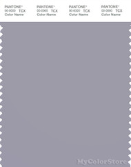 PANTONE SMART 16-3907X Color Swatch Card, Dapple Gray