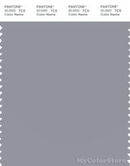 PANTONE SMART 16-3916X Color Swatch Card, Sleet