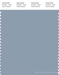PANTONE SMART 16-4010X Color Swatch Card, Dusty Blue