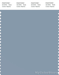 PANTONE SMART 16-4013X Color Swatch Card, Chicory
