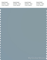 PANTONE SMART 16-4109X Color Swatch Card, Arona