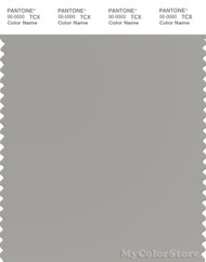 PANTONE SMART 16-4402X Color Swatch Card, Drizzle