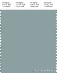 PANTONE SMART 16-4408X Color Swatch Card, Slate