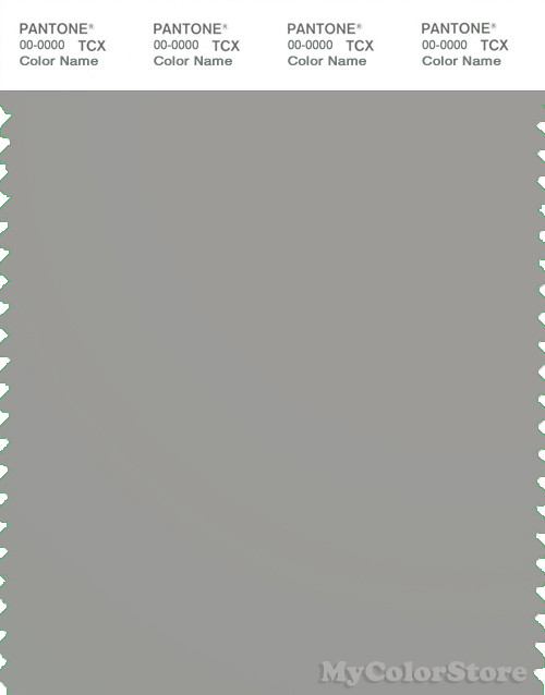 PANTONE SMART 16-4703X Color Swatch Card, Ghost Gray
