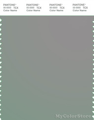 PANTONE SMART 16-5101X Color Swatch Card, Wet Weather