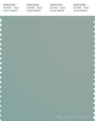 PANTONE SMART 16-5304X Color Swatch Card, Jadeite