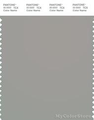 PANTONE SMART 16-5803X Color Swatch Card, Flint Gray