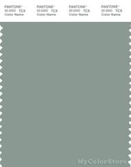 PANTONE SMART 16-5806X Color Swatch Card, Green Milieu