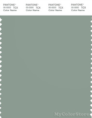 PANTONE SMART 16-5808X Color Swatch Card, Iceberg Green