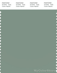 PANTONE SMART 16-5810X Color Swatch Card, Green Bay