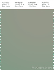 PANTONE SMART 16-6008X Color Swatch Card, Seagrass