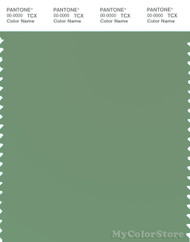 PANTONE SMART 16-6116X Color Swatch Card, Shale Green