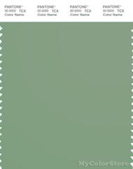 PANTONE SMART 16-6216X Color Swatch Card, Basil