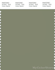 PANTONE SMART 17-0115X Color Swatch Card, Oil Green