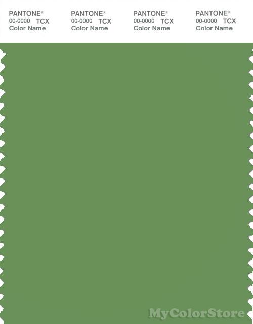 PANTONE SMART 17-0133X Color Swatch Card, Fluorite Green
