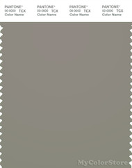 PANTONE SMART 17-0205X Color Swatch Card, Elephant Skin