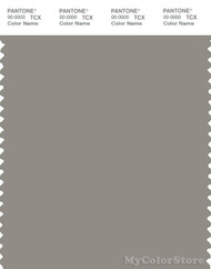 PANTONE SMART 17-0207X Color Swatch Card, Rock Ridge