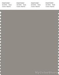 PANTONE SMART 17-0207X Color Swatch Card, Rock Ridge