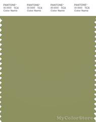PANTONE SMART 17-0324X Color Swatch Card, Epsom