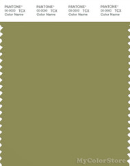 PANTONE SMART 17-0535X Color Swatch Card, Green Olive