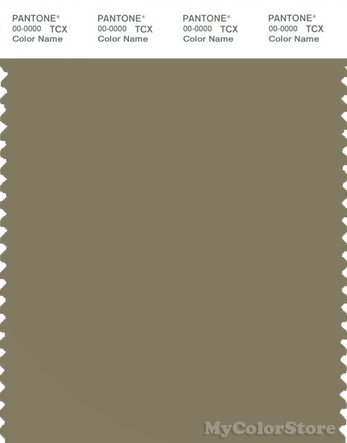 PANTONE SMART 17-0620X Color Swatch Card, Aloe