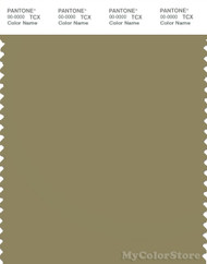 PANTONE SMART 17-0625X Color Swatch Card, Boa