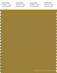 PANTONE SMART 17-0840X Color Swatch Card, Amber Green