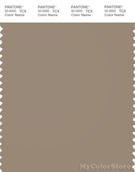 PANTONE SMART 17-1009X Color Swatch Card, Dune