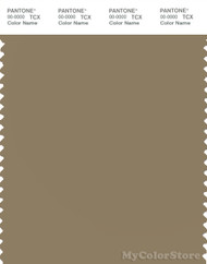 PANTONE SMART 17-1019X Color Swatch Card, Elmwood