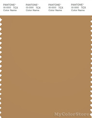 PANTONE SMART 17-1045X Color Swatch Card, Apple Cinnamon