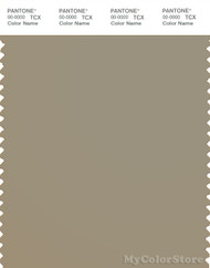 PANTONE SMART 17-1107X Color Swatch Card, Seneca Rock