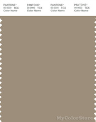 PANTONE SMART 17-1109X Color Swatch Card, Chinchilla