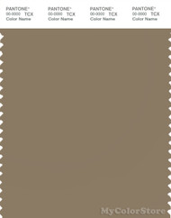 PANTONE SMART 17-1118X Color Swatch Card, Lead Gray