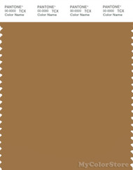 PANTONE SMART 17-1128X Color Swatch Card, Bone Brown