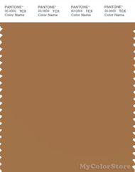 PANTONE SMART 17-1134X Color Swatch Card, Brown Sugar