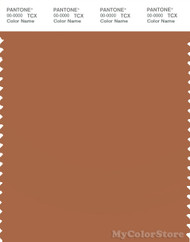 PANTONE SMART 17-1147X Color Swatch Card, Amber Brown