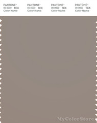 PANTONE SMART 17-1210X Color Swatch Card, Moon Rock