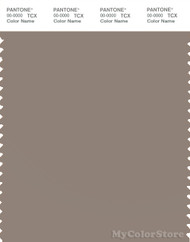 PANTONE SMART 17-1212X Color Swatch Card, Fungi