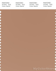 PANTONE SMART 17-1224X Color Swatch Card, Camel
