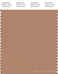 PANTONE SMART 17-1225X Color Swatch Card, Tawny Birch