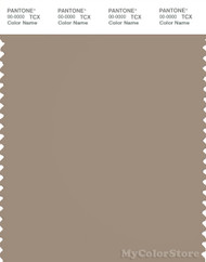 PANTONE SMART 17-1312X Color Swatch Card, Silver Mink