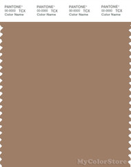 PANTONE SMART 17-1322X Color Swatch Card, Burro