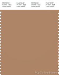 PANTONE SMART 17-1328X Color Swatch Card, Indian Tan