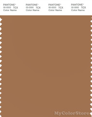 PANTONE SMART 17-1330X Color Swatch Card, Lion