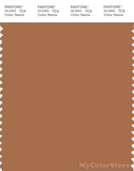 PANTONE SMART 17-1336X Color Swatch Card, Bran