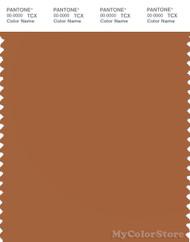 PANTONE SMART 17-1340X Color Swatch Card, Adobe