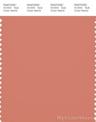 PANTONE SMART 17-1341X Color Swatch Card, Tawny Orange